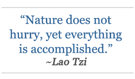 'Nature does not hurry, yet everything is accomplished.' ~Lao Tzi
